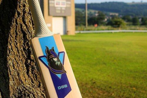 DG8 Limited Edition Bat